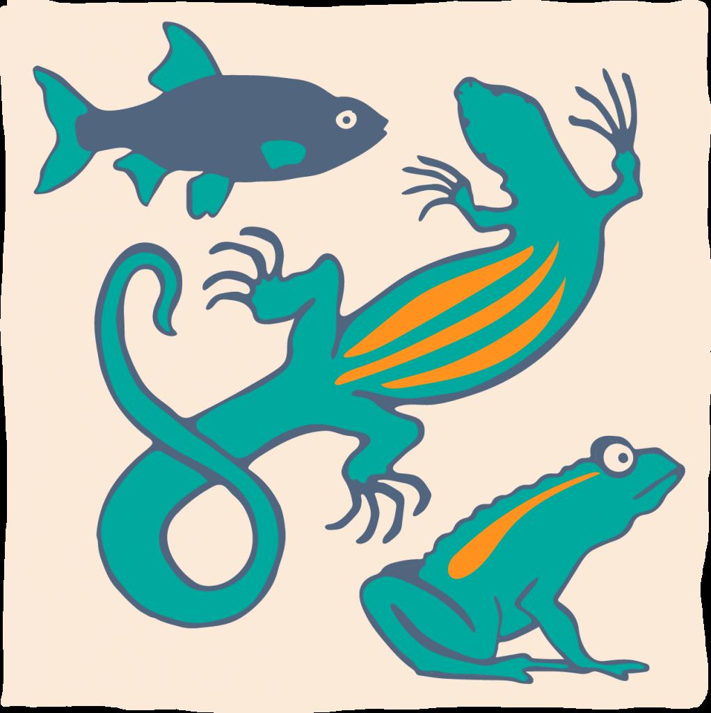 Reptielen, amfibieën en vissen